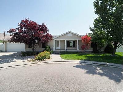 Salt Lake City Single Family Home For Sale: 836 W Diamond Rose Cir N