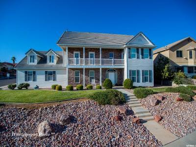 St. George Single Family Home For Sale: 183 E Joe Cir