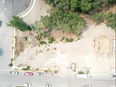 American Fork Residential Lots & Land For Sale: 775 N 730 E