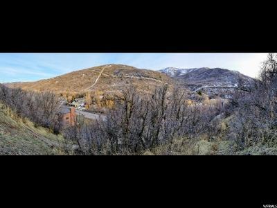 Salt Lake City Residential Lots & Land For Sale: 6025 N Emigration Canyon Rd