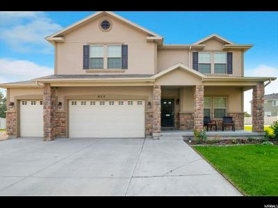 Lehi Single Family Home For Sale: 829 S Jordan Ct