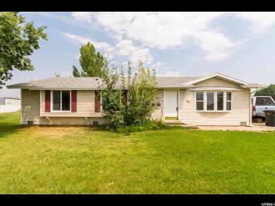 Amalga Single Family Home For Sale: 2505 W 6200 N