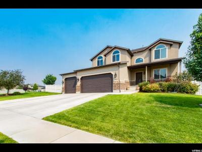 Saratoga Springs Single Family Home For Sale: 264 W Ivy Ln S