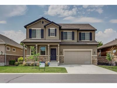 South Jordan Single Family Home For Sale: 11178 S Heather Grove Ln W