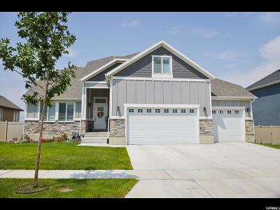 Bluffdale Single Family Home For Sale: 15162 S Skyfall Dr