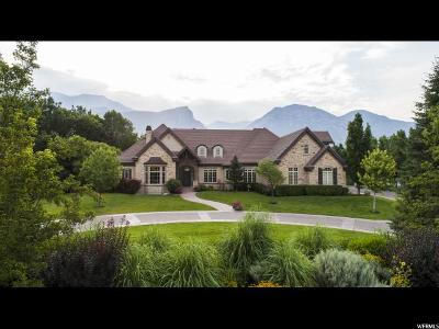 Orem Single Family Home For Sale: 1391 S 1140 E