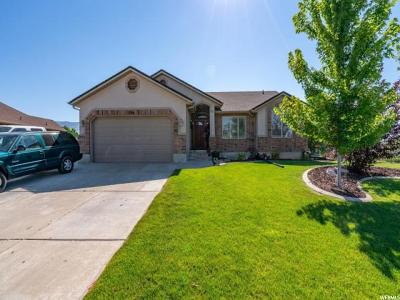 Weber County Single Family Home For Sale: 1264 N 1725 W