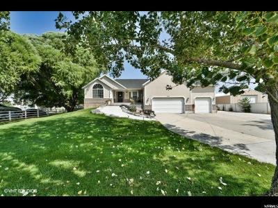 Draper Single Family Home For Sale: 201 E 13560 S