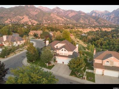 Cottonwood Heights UT Single Family Home For Sale: $725,000