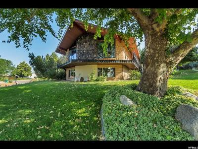 Orem Single Family Home For Sale: 1855 S Alta Vista Dr W