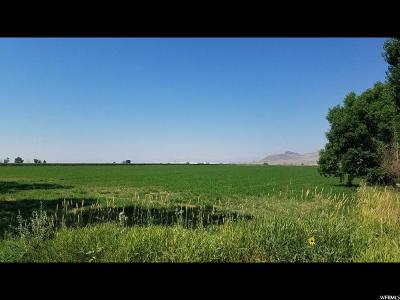 Bear River City UT Residential Lots & Land For Sale: $360,000