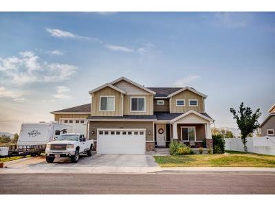 Lehi Single Family Home For Sale: 2818 W Willow Dr
