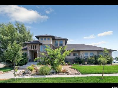 Spanish Fork Single Family Home For Sale: 986 W River Hill Dr