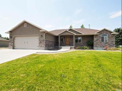 Tremonton Single Family Home For Sale: 831 N 400 E