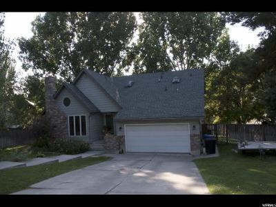 North Logan Single Family Home For Sale: 1931 N 1380 E