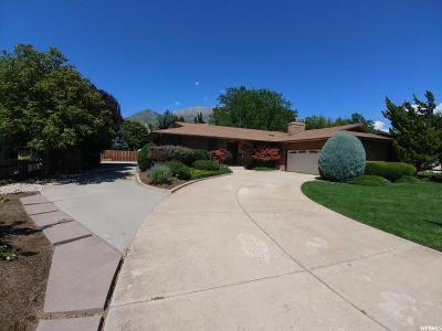 Orem Single Family Home For Sale: 1133 E 1010 N