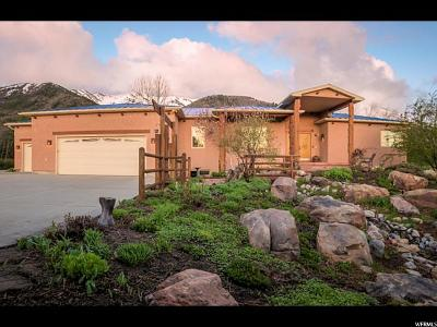 Wellsville Single Family Home For Sale: 5771 W 3400 S