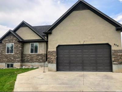 Provo Single Family Home For Sale: 904 S 890 W