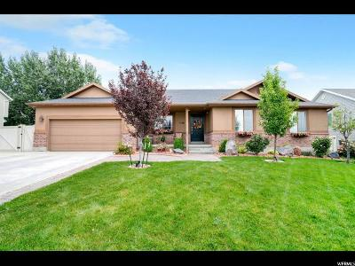 American Fork Single Family Home For Sale: 1186 N 500 W