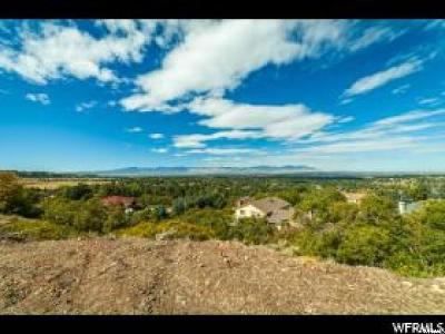 Cottonwood Heights Residential Lots & Land For Sale: 8558 S Little Willow Cir E