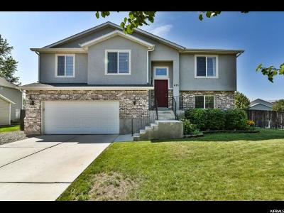 Lehi Single Family Home For Sale: 675 W 1675 S