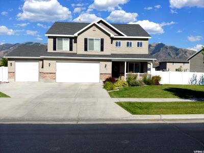 Nibley Single Family Home For Sale: 2222 Clear Creek Rd
