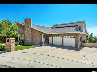 Springville Single Family Home For Sale: 107 N 1540 E