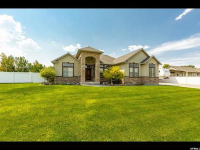 Riverton Single Family Home For Sale: 12098 S 4000 W