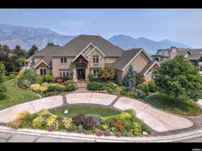 Provo, Orem Single Family Home For Sale: 1249 S 1100 E