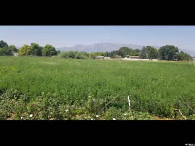 Hyrum Residential Lots & Land For Sale: 159 N 200 E