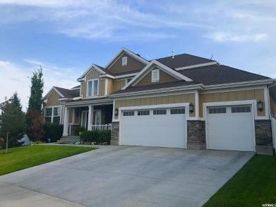 South Jordan Single Family Home For Sale: 3213 W Canyon Meadow Dr. S #401