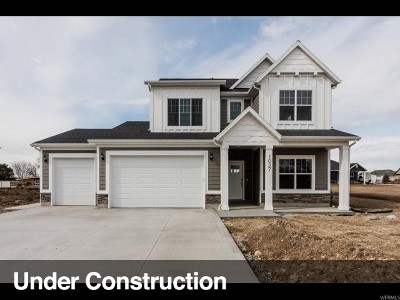 Weber County Single Family Home For Sale: 1027 N 1200 W #27