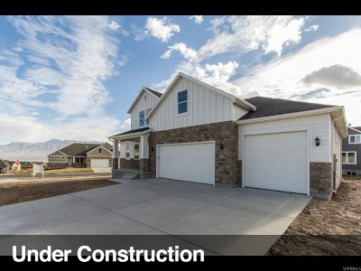 Riverton Single Family Home For Sale: 11851 S Graycliff Rd