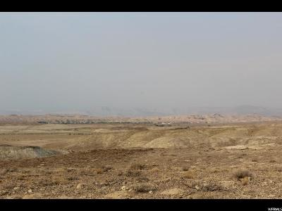Carbon, Emery County Residential Lots & Land For Sale: 4564 S Lower San Rafael