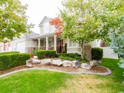 Draper Single Family Home For Sale: 11787 S Twin Ridge Dr