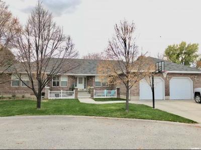 Tremonton Single Family Home For Sale: 237 Clara Pl