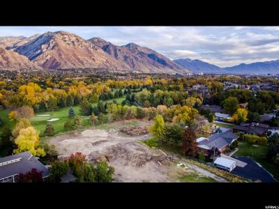 Orem Residential Lots & Land For Sale: 1091 S Carterville Rd