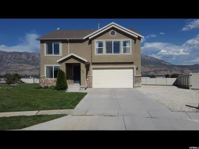 Lindon Single Family Home For Sale: 1506 W 540 N