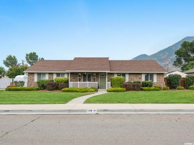 Springville Single Family Home For Sale: 548 W Saddle Back Dr