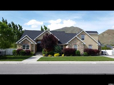 Springville Single Family Home For Sale: 1957 E 1200 S