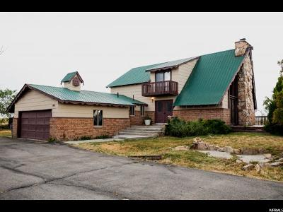 Erda Single Family Home For Sale: 3650 W Gundersen Cir