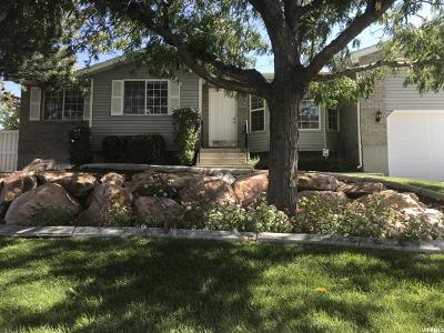 Sandy Single Family Home For Sale: 11351 S Silver Ridge Dr