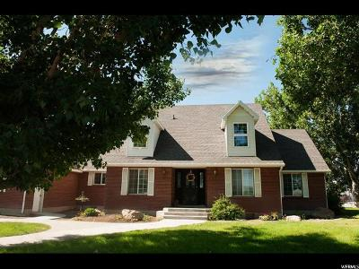 Tremonton Single Family Home For Sale: 9405 N 6000 W