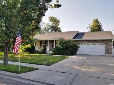 American Fork Single Family Home For Sale: 968 E 1300 N