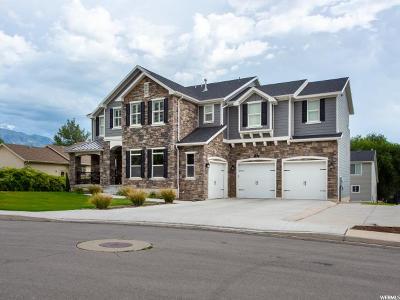 Pleasant Grove Single Family Home For Sale: 778 E 280 N