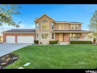 Alpine Single Family Home For Sale: 830 S East Mtn Cir E