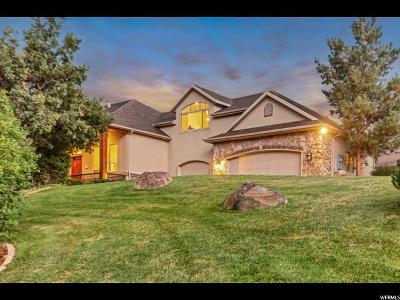 Alpine Single Family Home For Sale: 195 W Meadowlark Dr