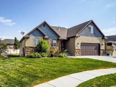Tremonton Single Family Home For Sale: 802 W 525 S