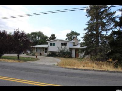 American Fork Single Family Home For Sale: 6481 W 9600 N