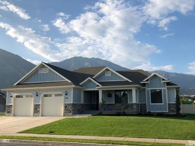 Salem Single Family Home For Sale: 916 E 430 S